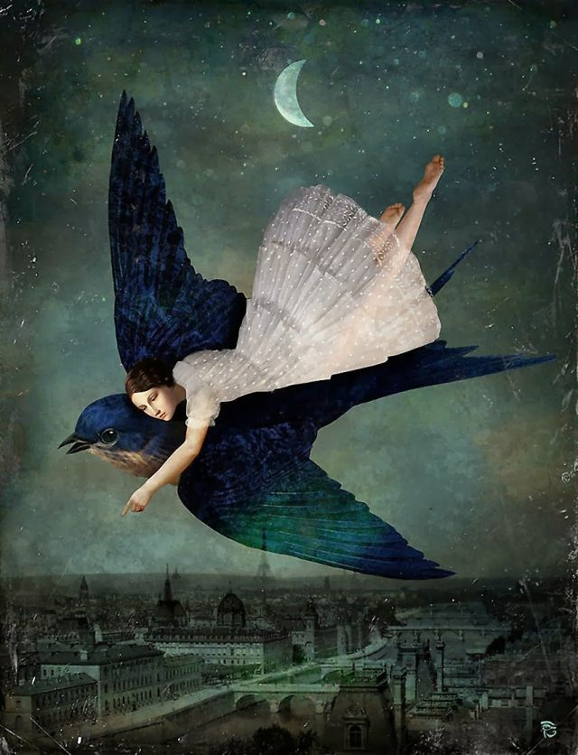 Fly Me to Paris, by Christian Schloe